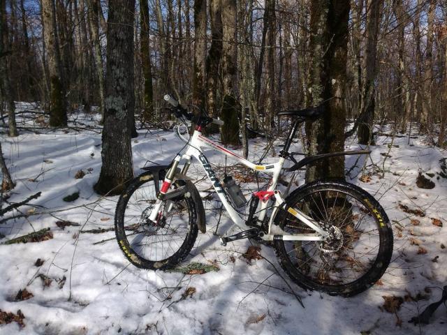 Giant в лесу)