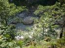 Внизу река Пшеха