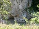 Скала на Пшехе