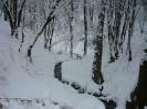 Ручеек в зимнем лесу